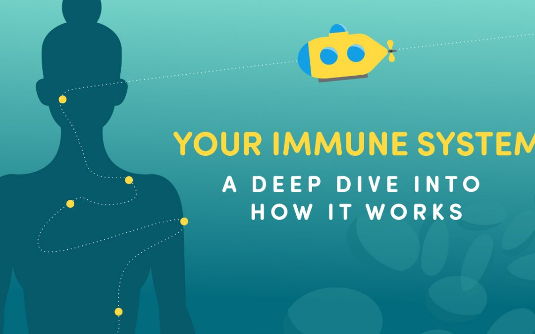 Our Awesome Immune System Info-graphic